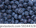 大量新鮮藍莓,花青素,抗氧化劑,維生素, 56344328