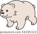 北極熊 56385322