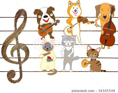 애완 동물의 콘서트 56385549