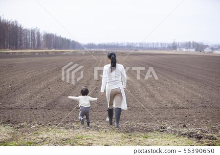 농가의 친자 봄 밭 56390650