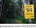 숲의 곰 출몰주의 56391639