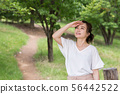 一个女人在新鲜的绿色 56442522