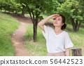 一个女人在新鲜的绿色 56442523