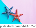 Summer concept. Starfish on color background with 56446757