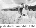 Bride and groom kissing and hugging tenderly in wheat field somewhere in Slovenian countryside. 56483161
