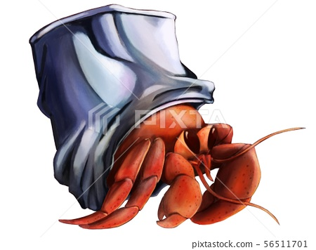 Hermit Crab 56511701