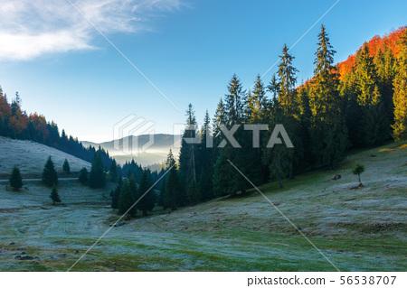 beautiful autumn scenery in mountains 56538707