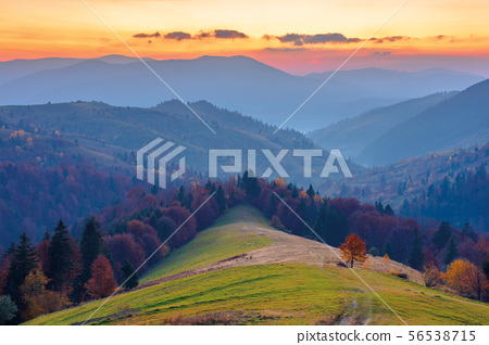 rural area in mountains at dusk 56538715