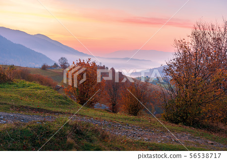 rural area in mountains at dawn 56538717