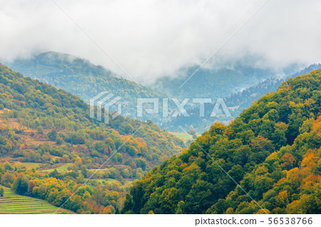 beautiful countryside on a rainy day in mountains 56538766