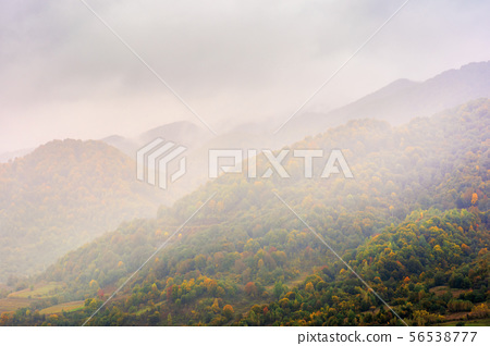 autumn rainy day in mountains 56538777