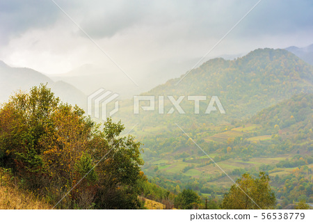 autumn rainy day in mountains 56538779