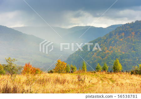 autumn rainy day in mountains 56538781