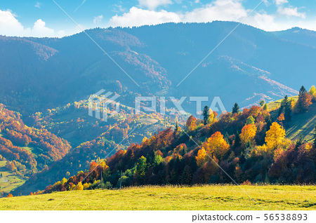 wonderful autumn afternoon in mountains 56538893