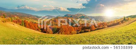 beautiful panoramic landscape in october 56538899