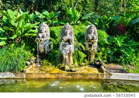 Statues in Ubud Monkey Forest on Bali, Indonesia 56558045