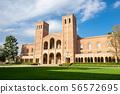 UCLA University, Los Angeles 56572695