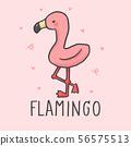 Cute Flamingo cartoon hand drawn style 56575513