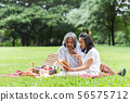 asian senior couple picnic and reading book in the 56575712