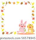 토끼와 고양이의 가을 프레임 56578945