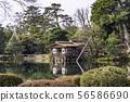 (Ishikawa Prefecture) Kenrokuen, no snow, winter scenery 56586690