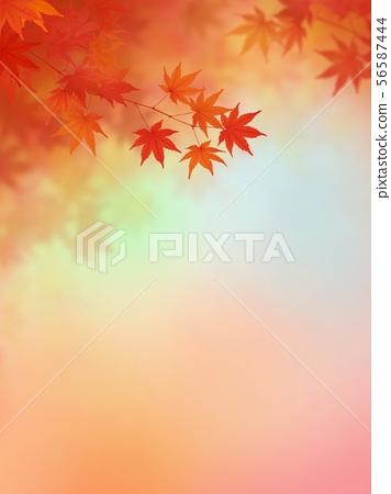 背景 - 日本 - 日本風格 - 日本模式 - 日本紙 - 秋葉 - 秋天 - 漸變 56587444