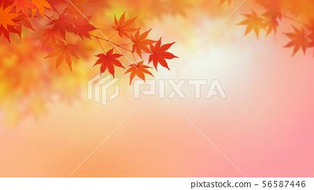背景 - 日本 - 日本風格 - 日本模式 - 日本紙 - 秋葉 - 秋天 - 漸變 56587446