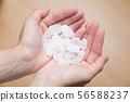 얼음 사탕 56588237