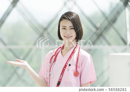 醫學圖像 56588281