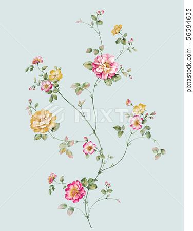 色彩豐富的水彩花卉 56594635