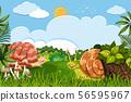Snails in woods scene 56595967
