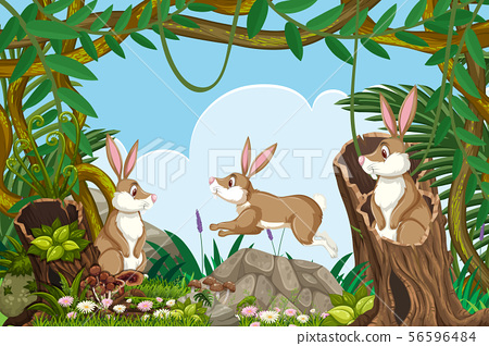 Rabbits in jungle scene 56596484