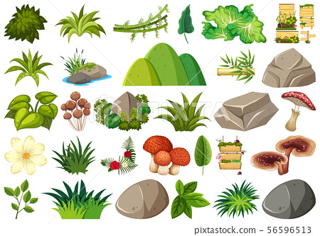 Set of isolated objects theme - gardening 56596513