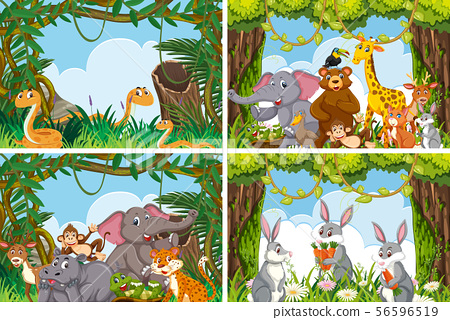 Set of various animals in nature scenes 56596519