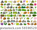 Set of isolated objects theme - gardening 56596529