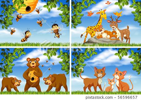 Set of various animals in nature scenes 56596657