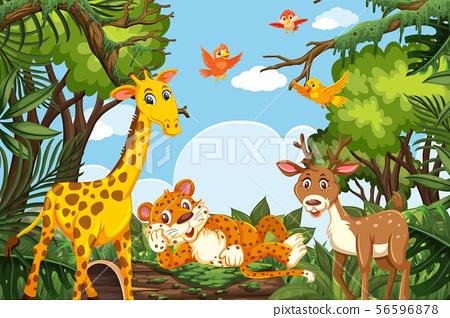 Cute animals in jungle scene 56596878