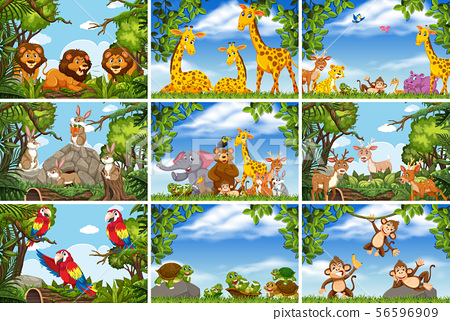 Set of various animals in nature scenes 56596909