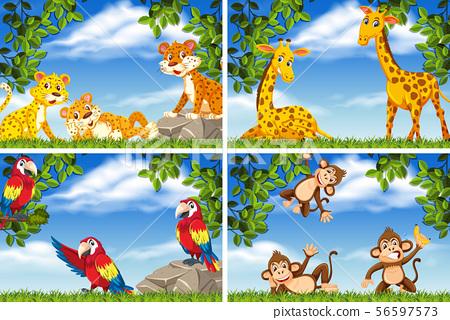 Set of various animals in nature scenes 56597573
