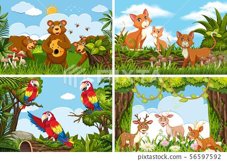 Set of various animals in nature scenes 56597592
