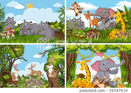 Set of various animals in nature scenes 56597614
