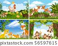 Set of various animals in nature scenes 56597615