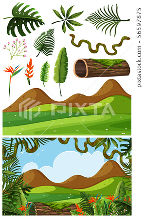 Nature objects and scene 56597875