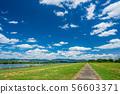 夏季河流公园 56603371