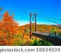 晩秋のほしだ園地と吊橋 56634034