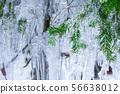 在白川鄉發現的雪景中的冰柱 56638012