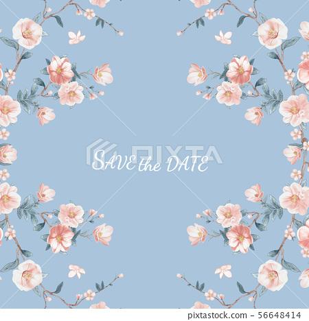 色彩柔和的手繪水彩花卉 56648414