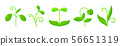 sprout plant green grass simple flat vector icon 56651319