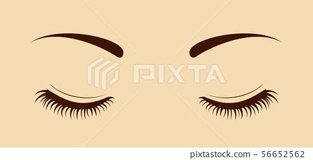 闭着眼睛的眼睛的特写(用睫毛) 56652562