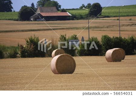 European village 56654031
